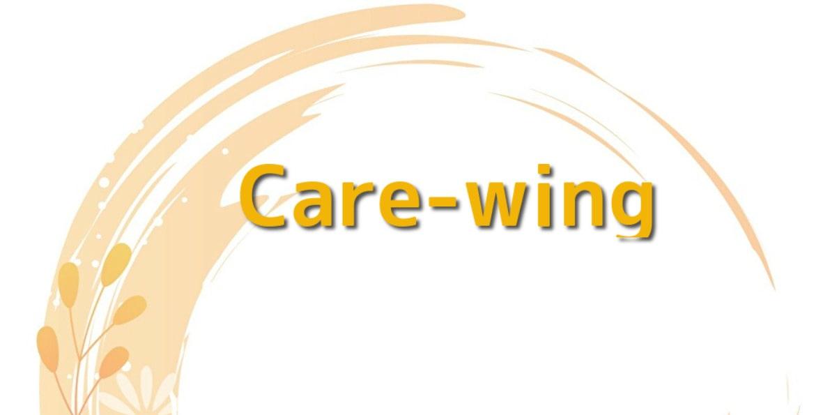 Care-wing(ケアウィング)の評判を徹底解説!完全ペーパーレス?