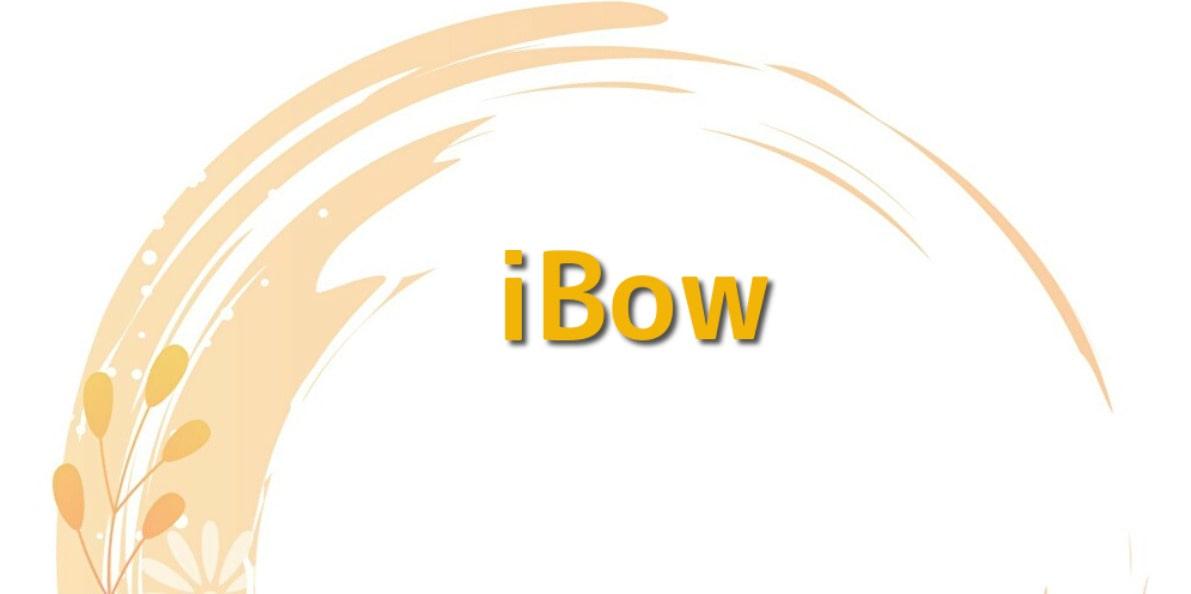 iBow(アイボウ)の評判を徹底解説!訪問看護は必須?